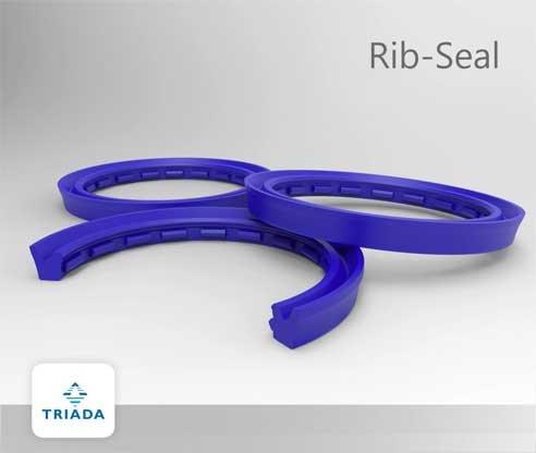 Rib_Seal_triada